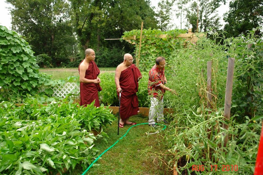 Vihara Vegi Garden